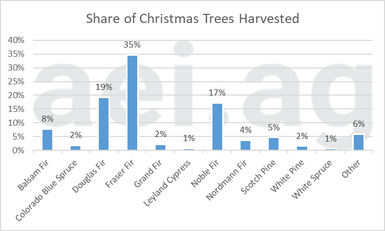 2020 Christmas tree facts